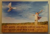 Bild mit Jahreslosung 2017, 60 x 40 x 3,5 cm, Design Taube